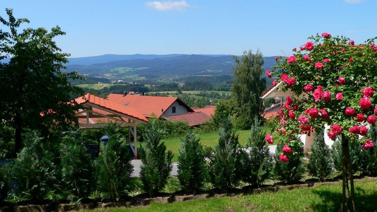Ferienhaus Bodenmais am Arber Blick von der Terrasse