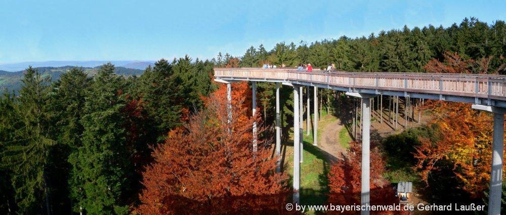 ausflugsziele-niederbayern-waldwipfelweg-aussichtspunkt-sankt-englmar